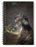 The Koala Spiral Notebook