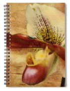The Lady Slipper Orchid Spiral Notebook