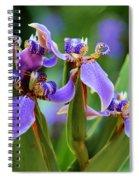 The Land Of Fairies Spiral Notebook