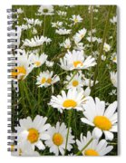 The Land Of White Daisies Spiral Notebook