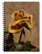 The Last Autumn Rose Before The First Snow Spiral Notebook