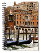 The Last Pigeon In Venice Spiral Notebook