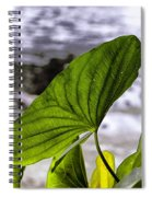The Leaf Of A Water Plant Spiral Notebook