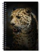 The Leopard Spiral Notebook