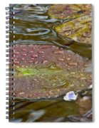 The Lily Pad Spiral Notebook