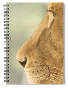 The Lion And The Fly Spiral Notebook