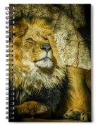 The Lion Spiral Notebook