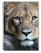 The Lion Queen Spiral Notebook