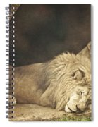 The Lion Sleeps Tonight Spiral Notebook