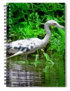 The Little Blue Heron Spiral Notebook