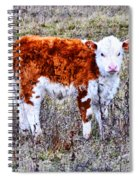 The Little Cow Spiral Notebook