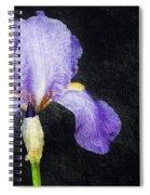 The Lone Iris Spiral Notebook