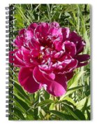 The Lonely Flower Spiral Notebook