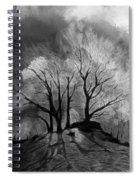 The Lonely Grave Spiral Notebook
