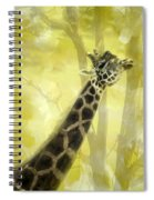 The Long Morning Stretch Spiral Notebook