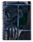 The Look Of Captivity Spiral Notebook