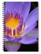 The Lotus Flower - Tropical Flowers Of Hawaii - Nymphaea Stellata Spiral Notebook