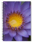 The Luxury Of Things Spiral Notebook