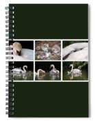 The Magic Of Spring Panorama Spiral Notebook