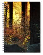 The Magic Of The Forest  Spiral Notebook
