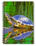 The Magnificence Of Turtle Spiral Notebook