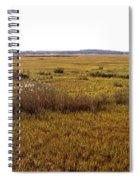 The Marsh At Cape Henlopen Spiral Notebook