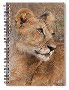 The Matriarch Spiral Notebook