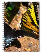 The Meeting Of The Butterflies Spiral Notebook