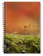 The Miniature World Of Moss  Spiral Notebook