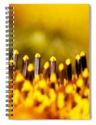 the Miracle of a Single Flower Spiral Notebook