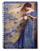 The Mirror Spiral Notebook