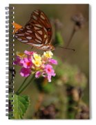 The Monarch 2 Spiral Notebook