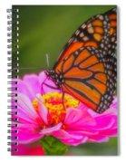 The Monarch's Flower Spiral Notebook