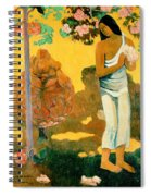 The Month Of Mary Spiral Notebook