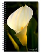 The Morning Trumpets Spiral Notebook