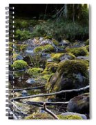The Moss In The River Stones Spiral Notebook