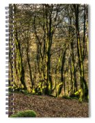 The Mossy Creatures Of The  Old Beech Forest 4 Spiral Notebook