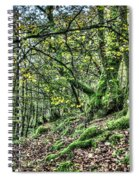 The Mossy Creatures Of The  Old Beech Forest 5 Spiral Notebook