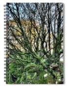 The Mossy Creatures Of The  Old Beech Forest 8 Spiral Notebook