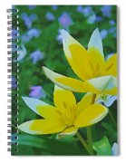 The Most Beautiful Flowers Spiral Notebook