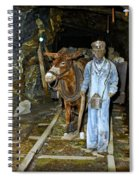 The Mule Boy Spiral Notebook