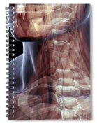 The Muscles Of The Neck Spiral Notebook