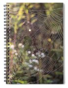 The Net Spiral Notebook