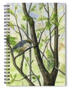 The Nuthatch Spiral Notebook