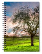 The Old Apple Tree At Dawn Spiral Notebook