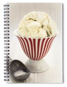 The Old Ice Cream Shoppe Spiral Notebook