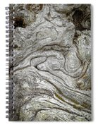 The Old Man By The Sea Spiral Notebook