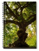 The Old Mango Tree Spiral Notebook