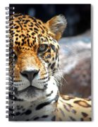 The Ole Leopard Don't Change His Spots Spiral Notebook