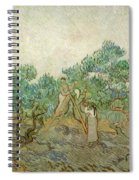 The Olive Orchard Spiral Notebook